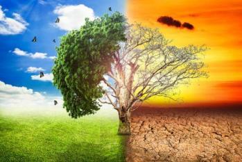 Rechauffement climatique 5
